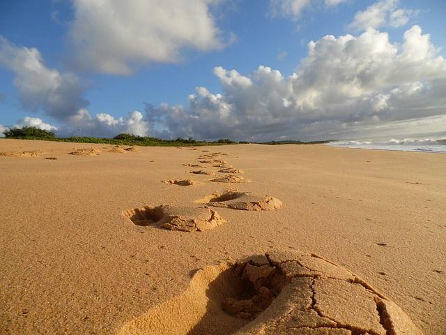 beach-203527_640_stappen op strand.jpg
